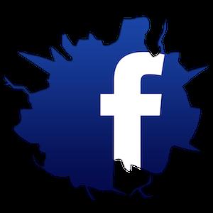 facebook-logo-vitturi