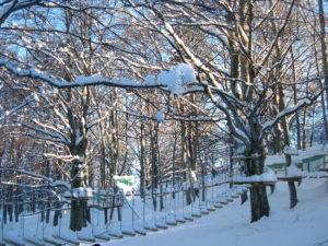 parco neve 2008 014